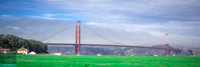 Golden Gate FocusPhotoCo Tw Banner-1